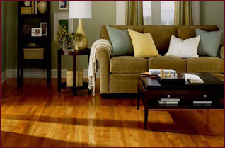 Beautiful Hardwoods